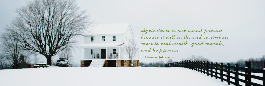 home-slider-quote-03